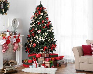 Který vánoční stromek je hezčí? Živý, nebo umělý?