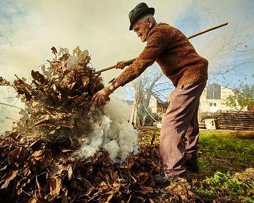 Pálení odpadu na zahradě. Platí zákaz spalování odpadů?
