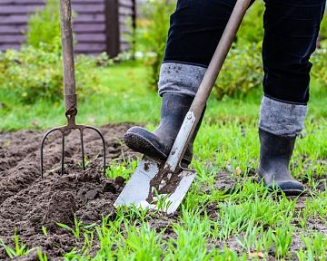 Jak připravit zahradu na jaro – příprava půdy na sázení, kdy rýt